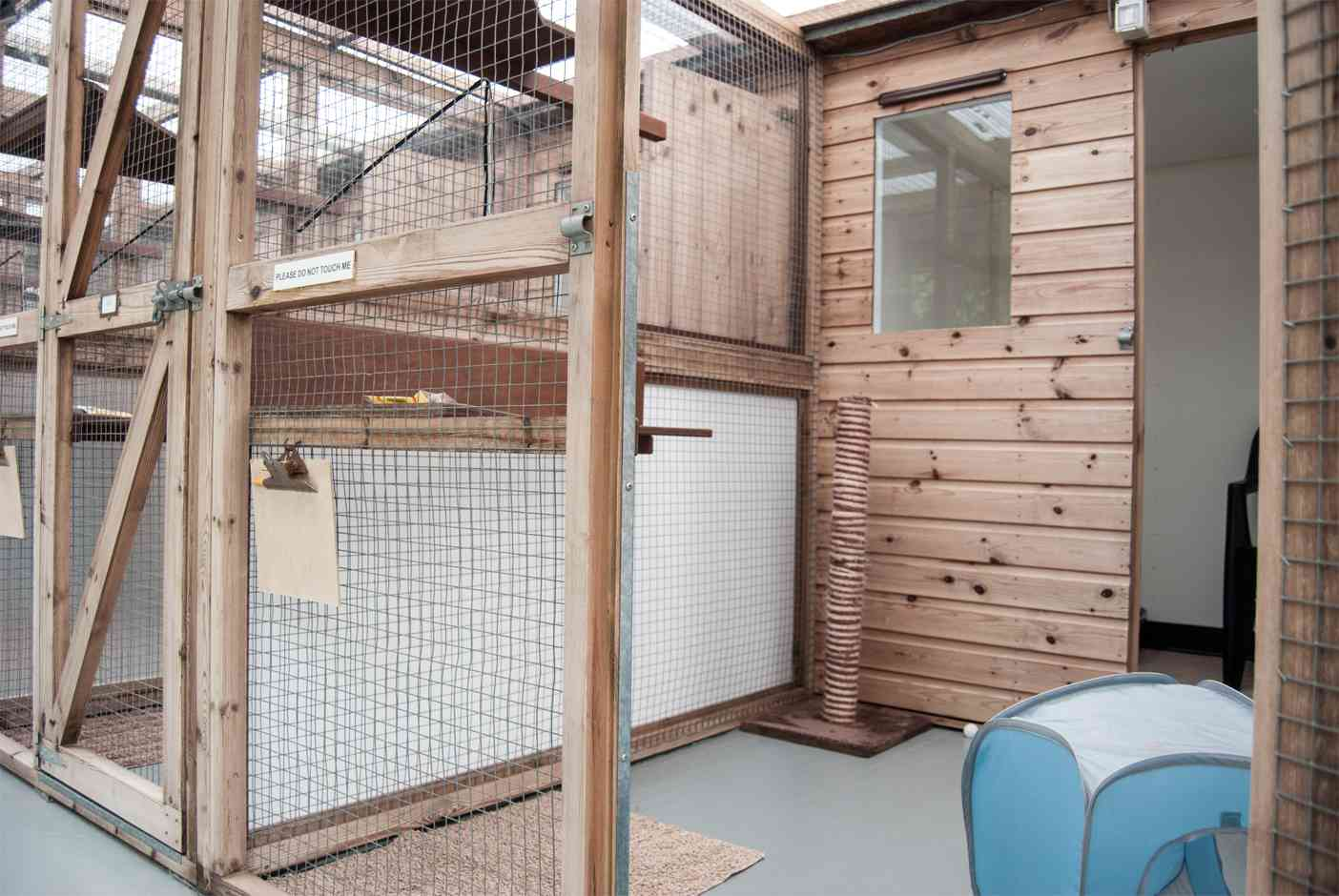 A cabin suitable for 1-2 cats sharing from same household